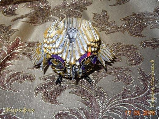 Сова- золотая голова. фото 5