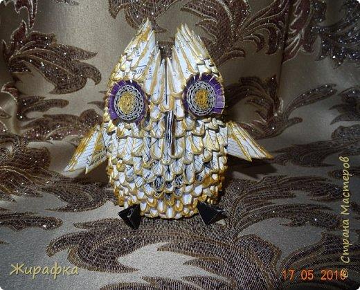 Сова- золотая голова. фото 6