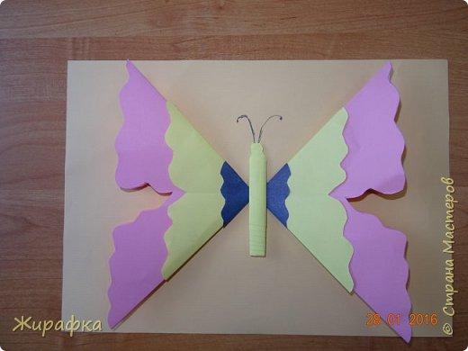 Бабочка. фото 2