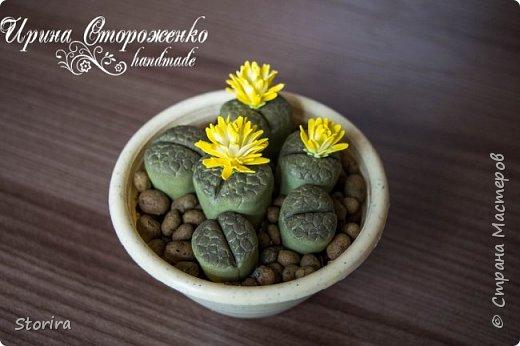 Цветы из фоамирана (мой полугодовой опыт цветоделия) фото 9