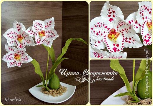 Цветы из фоамирана (мой полугодовой опыт цветоделия) фото 6