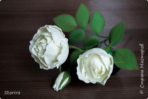 Цветы из фоамирана (мой полугодовой опыт цветоделия) фото 12