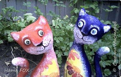Котики неразлучники фото 3