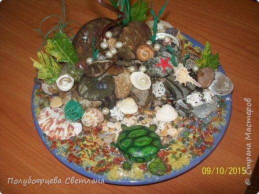 """Ландшафтная композиция """"морская черепаха"""" фото 3"""