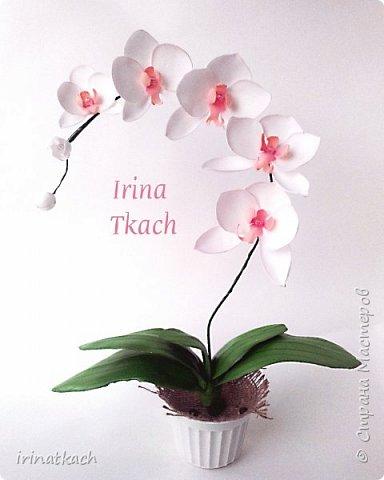 Мои орхидеи из фоамирана фото 6