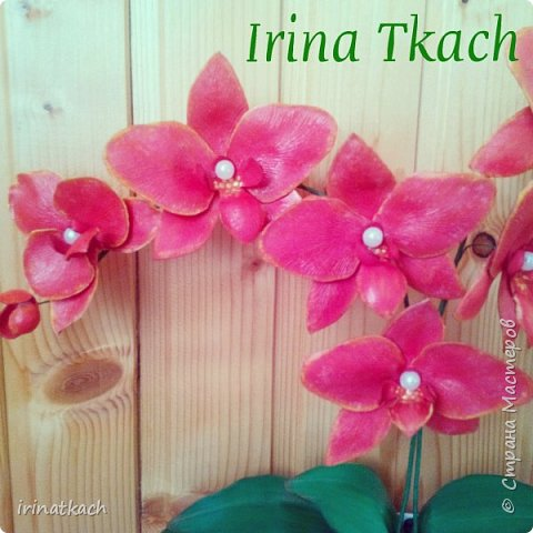Мои орхидеи из фоамирана фото 8