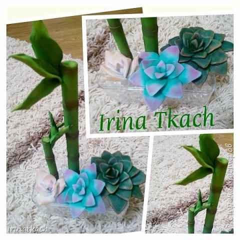 Мои орхидеи из фоамирана фото 10