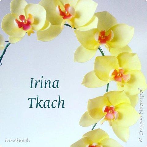 Мои орхидеи из фоамирана фото 13