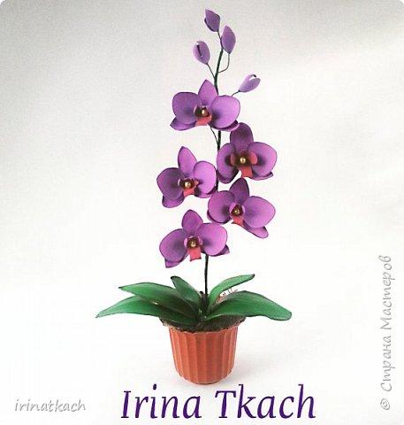 Мои орхидеи из фоамирана фото 14
