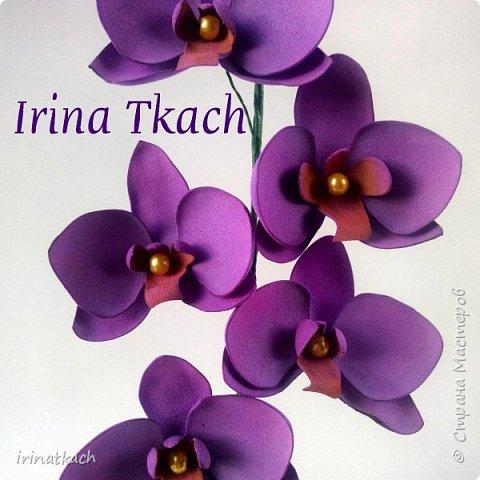 Мои орхидеи из фоамирана фото 15