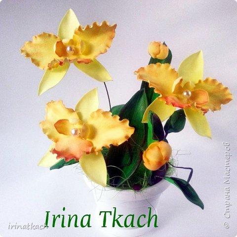 Мои орхидеи из фоамирана фото 16