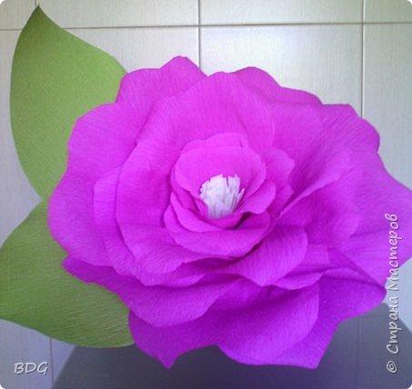 Сделала несколько цветочков для фотосессии фото 4