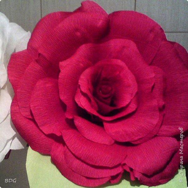 Сделала несколько цветочков для фотосессии фото 1
