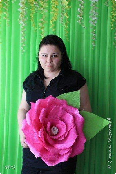 Сделала несколько цветочков для фотосессии фото 2