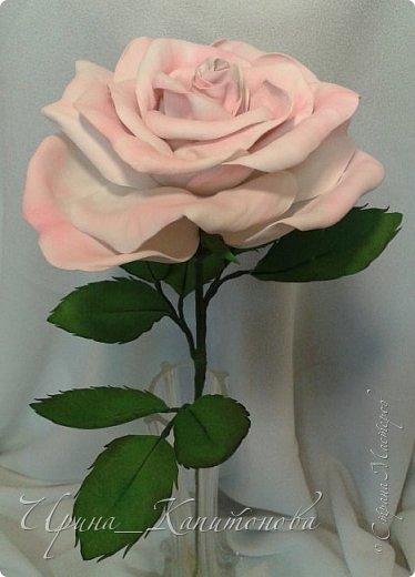 Доброго времени суток всем жителям и гостям Страны Мастеров!!! Решила замахнуться на изготовление интерьерных цветов... тем более подвернулся подходящий случай- день рождения у тётушки:))))) А она обожает розы.... фото 3