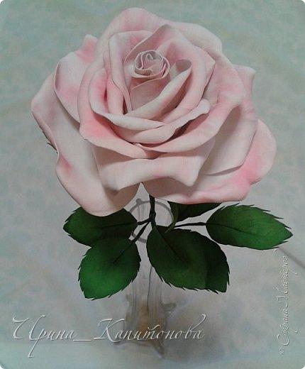 Доброго времени суток всем жителям и гостям Страны Мастеров!!! Решила замахнуться на изготовление интерьерных цветов... тем более подвернулся подходящий случай- день рождения у тётушки:))))) А она обожает розы.... фото 2