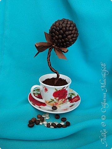 Вот и еще один танцующий цветок...  Бразильский кофе дарит аромат и в танец тянет каждого... фото 3