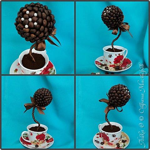 Вот и еще один танцующий цветок...  Бразильский кофе дарит аромат и в танец тянет каждого... фото 1