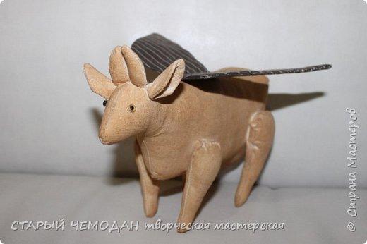 корова кофейная фото 5