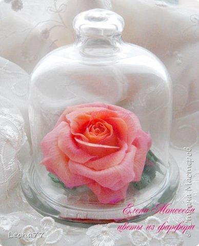 Вот еще моя работа из холодного фарфора. Люблю лепить розы,недаром она считается королевой цветов.  фото 1