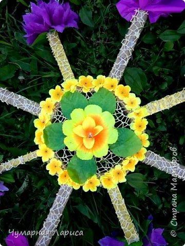 Цветочный компас фото 2