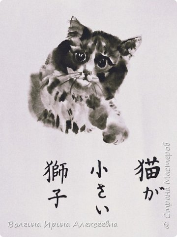 Кошка маленький лев