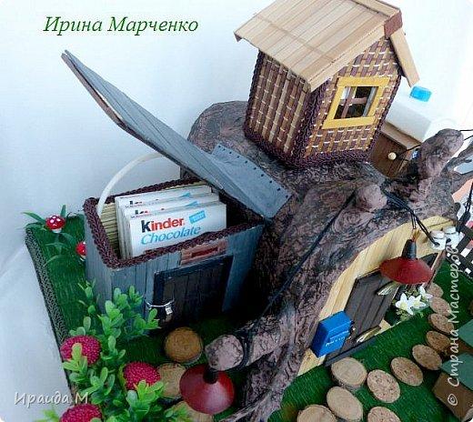 Мишкин дом. фото 8