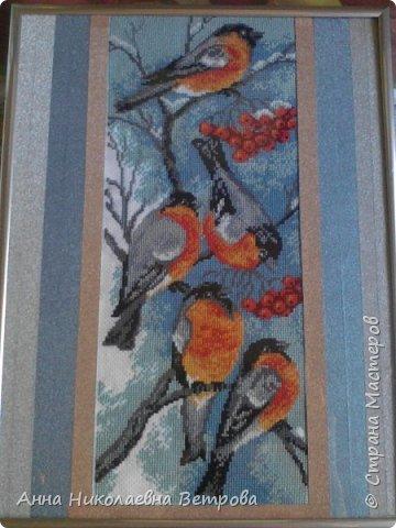 Мне очень нравиться вышивать птиц, и я нашла вышиву которую искала. Снегири красивые  птицы, сидящие на ветках рябины. Я быстро нашла подходящую вышивку в магазине и села вышивать. Она вышивалась чуть больше двух месяцев.  фото 1