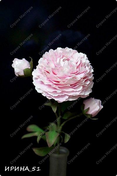 Здравствуйте! Рада всех видеть у себя в гостях. Я сегодня с пиончиком и интерьерной чашечкой с розами.  Приятного просмотра.  фото 6