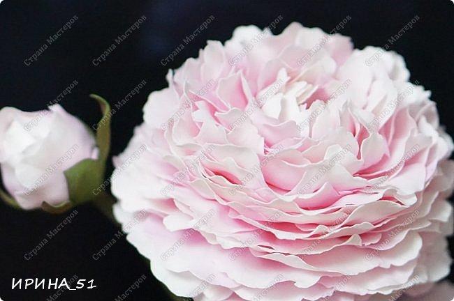 Здравствуйте! Рада всех видеть у себя в гостях. Я сегодня с пиончиком и интерьерной чашечкой с розами.  Приятного просмотра.  фото 1
