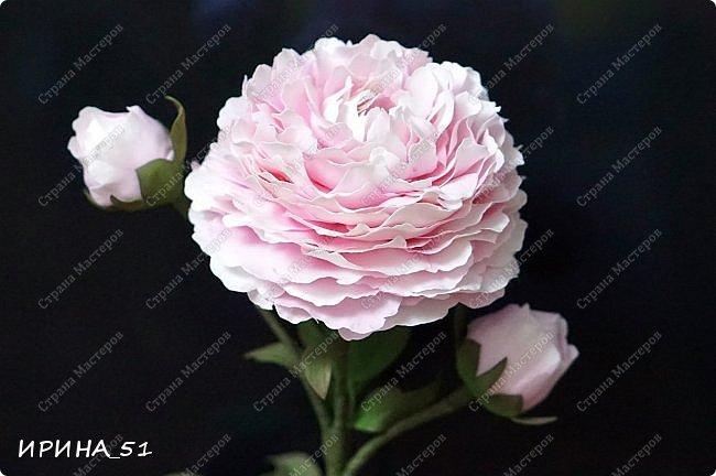 Здравствуйте! Рада всех видеть у себя в гостях. Я сегодня с пиончиком и интерьерной чашечкой с розами.  Приятного просмотра.  фото 10