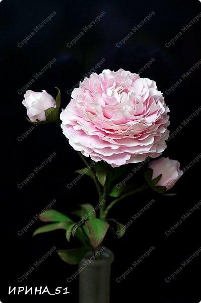 Здравствуйте! Рада всех видеть у себя в гостях. Я сегодня с пиончиком и интерьерной чашечкой с розами.  Приятного просмотра.  фото 3