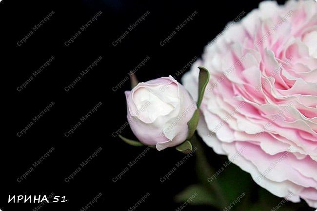 Здравствуйте! Рада всех видеть у себя в гостях. Я сегодня с пиончиком и интерьерной чашечкой с розами.  Приятного просмотра.  фото 4