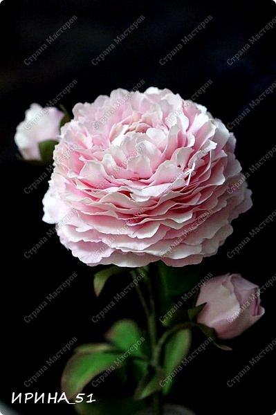 Здравствуйте! Рада всех видеть у себя в гостях. Я сегодня с пиончиком и интерьерной чашечкой с розами.  Приятного просмотра.  фото 2