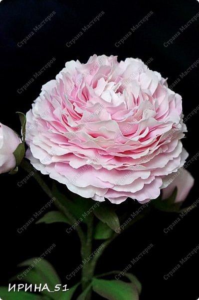 Здравствуйте! Рада всех видеть у себя в гостях. Я сегодня с пиончиком и интерьерной чашечкой с розами.  Приятного просмотра.  фото 8