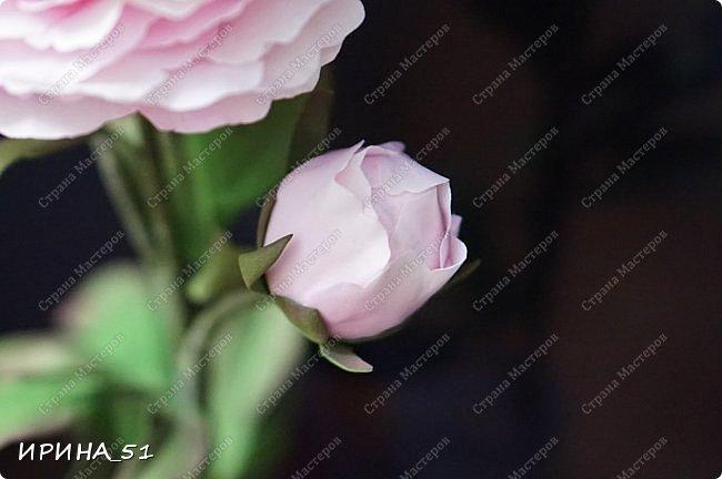 Здравствуйте! Рада всех видеть у себя в гостях. Я сегодня с пиончиком и интерьерной чашечкой с розами.  Приятного просмотра.  фото 5
