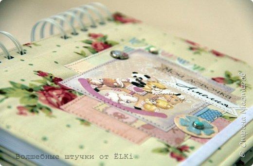 Решила показать ещё парочку работ, сделанных в последнее время.  Два прекрасных бебибука (книжки мамы и малыша) для двух прекрасных маленьких принцесс и их мам, моих дорогих подруг сложились у меня на одном дыхании. Книжки на пружине. Внутри около 100 цветных листов для записей от рождения до 6 лет. Я влюбилась в этих пухляшей, такие нежные получились, воздушные... фото 3