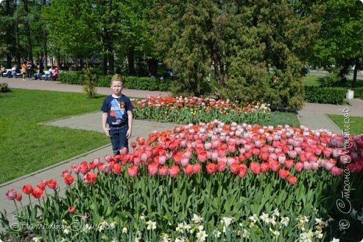 Ещё раз здравствуйте, дорогие друзья!!! В продолжение предыдущего репортажа (https://stranamasterov.ru/node/1028276) хочу рассказать вам, как мы провели День Победы в Москве. Масштабные мероприятия в этот день проходили, конечно же, по всему городу, но так как мы жили в районе ВДНХ, туда и отправились с самого утра. P.S. Картинка с сайта w-dog.ru (https://w-dog.ru/wallpaper/wot-world-of-tanks-mir-tankov-wargamingnet-bigworld-tanki-tank-tanks-tank-9-maya-den-pobedy-prazdnik-t-34-85/id/284415/). фото 7