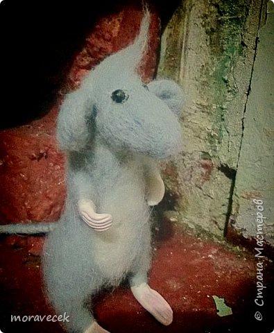 Мышь - сухое валяние. Первая работа)) фото 3
