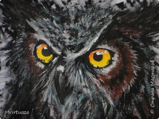 На просторах интернета нашла великолепные рисунки хорватского художника Dino Tomic (AtomiccircuS).  Вау!! только и могла сказать я и, захомячив эдакую красоту, принялась приобщаться, точнее сказать - повторюшничать. Вот что получилось: Сова! (или филин..) фото 2