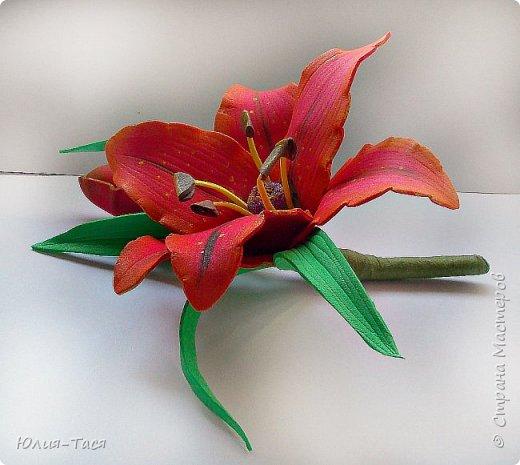 Учусь делать цветы из фома фото 1