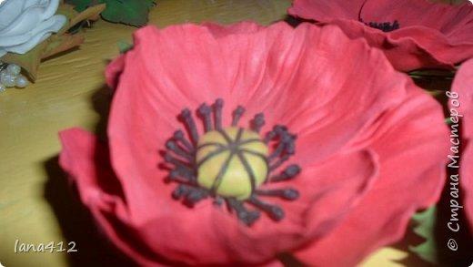 вот сколько цветов у меня получилось! фото 8