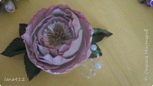 вот сколько цветов у меня получилось! фото 10