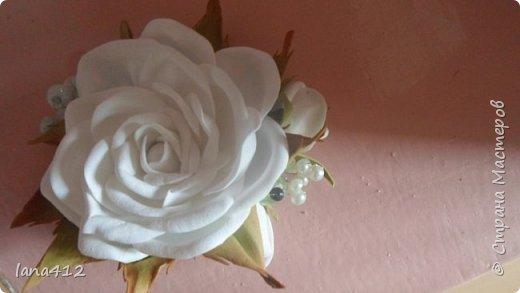 вот сколько цветов у меня получилось! фото 12