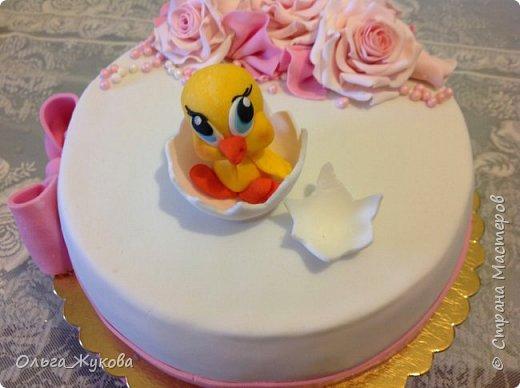 Всем доброго времени суток! Ещё один торт с розами на день рождения, в данном случае, детского клуба. На этот раз вылупился птенчик!! фото 1