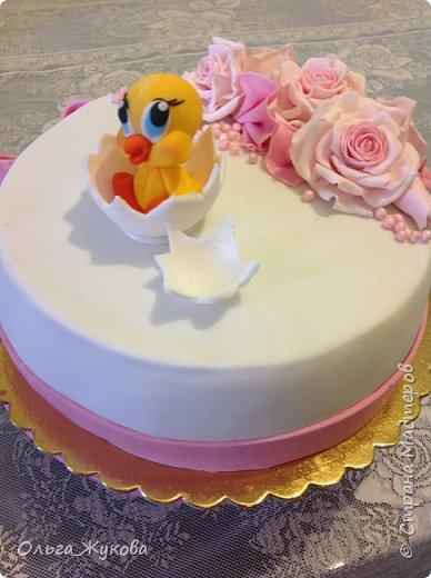 Всем доброго времени суток! Ещё один торт с розами на день рождения, в данном случае, детского клуба. На этот раз вылупился птенчик!! фото 2