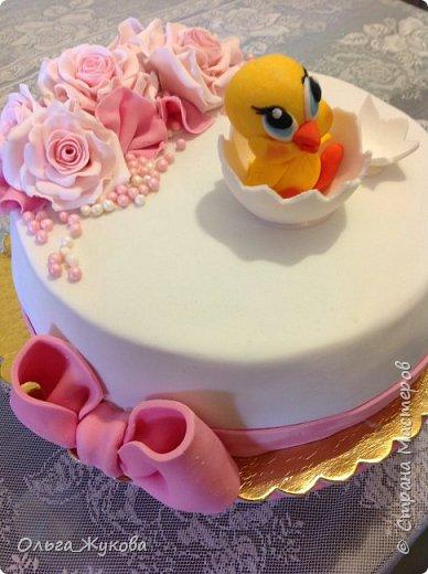 Всем доброго времени суток! Ещё один торт с розами на день рождения, в данном случае, детского клуба. На этот раз вылупился птенчик!! фото 3