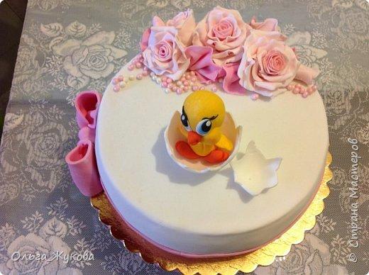 Всем доброго времени суток! Ещё один торт с розами на день рождения, в данном случае, детского клуба. На этот раз вылупился птенчик!! фото 6