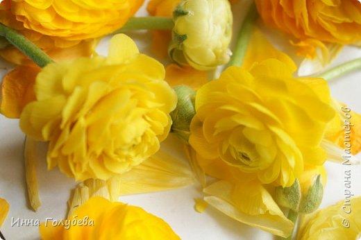 Вторая часть.На этом фото слева мой цветочек,справа- прототип) фото 2