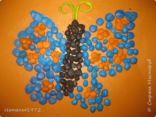 Бабочки пластилиновые фото 3